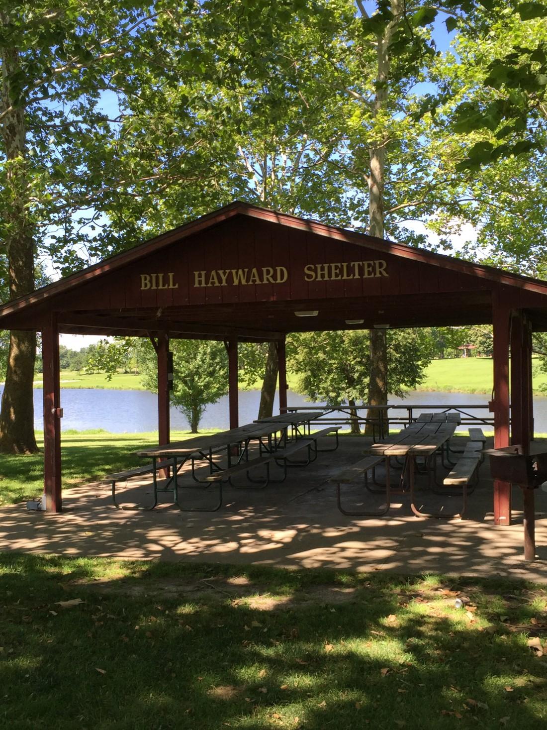Hayward Shelter